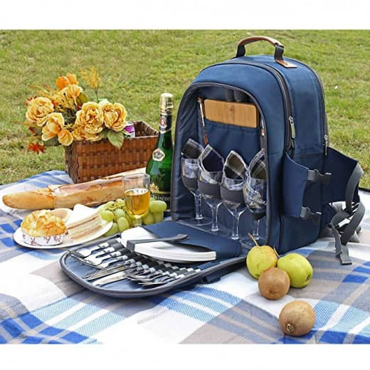Picnic backpack with some fruits, wine and flowers