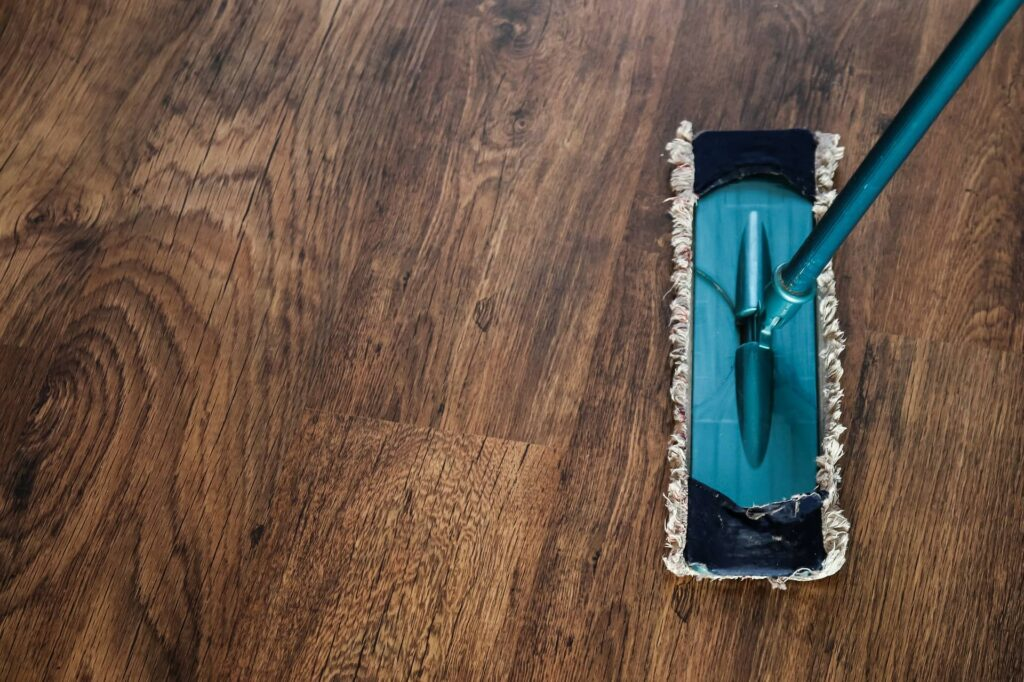 Vacuum Cleaner on a Wooden Carpet